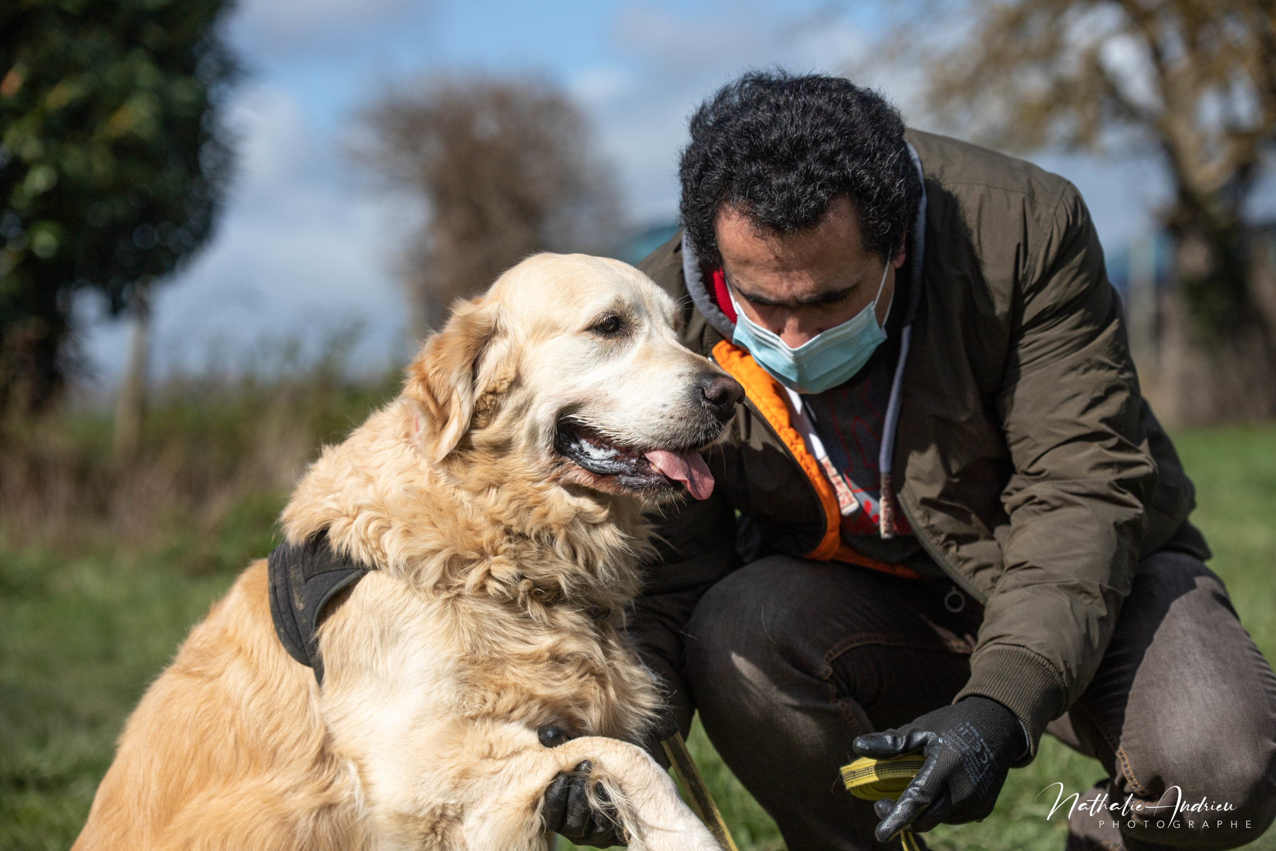 Stage Éducation Canine FORMAT INTENSE educhien78 education canine club canin de la plaine de jouars educateur canin yvelines 78